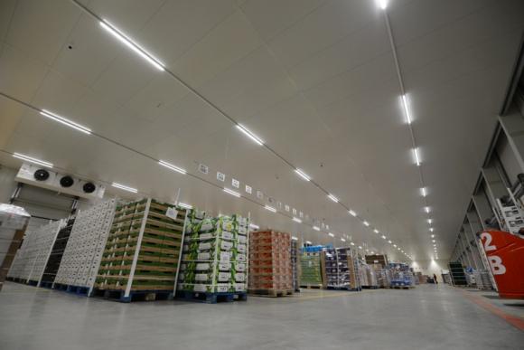Jakie rozwiązania są przyszłością dla logistyki świeżych produktów? BIZNES, Gospodarka - Logistyka świeżych produktów, ze względu na konieczność zapewnienia konsumentom podstawowych towarów, nie mogła zwolnić tempa. Co więcej, w niektórych przypadkach można stwierdzić, że sytuacja przyspieszyła niektóre ze zmian.