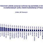 V rok wzrostu rynku chemii budowlanej
